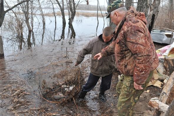запрет на ловлю щуки в беларуси в 2017 году в брестской области